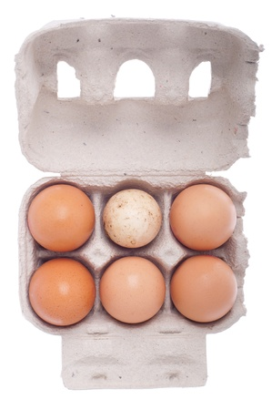 eggs in a carton box, one dirty among beige (isolated on white background) photo
