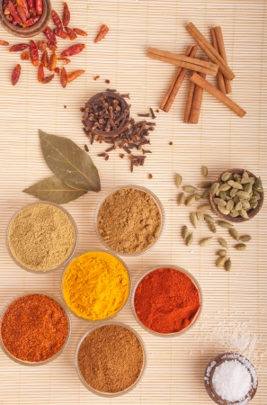 gorgeous setting with cooking spices and herbs (bay leaves, cumin, coriander, chili powder, cloves, cardamom pods, cinnamon sticks, paprika, piri piri, salt, turmeric) on a wooden mat Stock Photo - 9729046