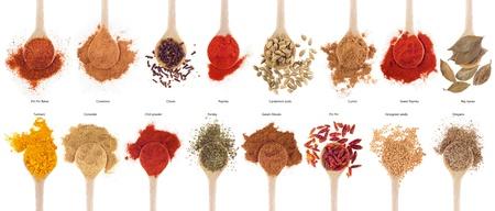 indian spices: prachtige collectie van 16 specerijen op houten lepels (komijn, koriander, kruidnagel, curry, chili, piri piri, kaneel, kardemom, fenegriek, garam masala, oregano, peterselie, paprika, kurkuma, baai) geïsoleerd op witte achtergrond Stockfoto