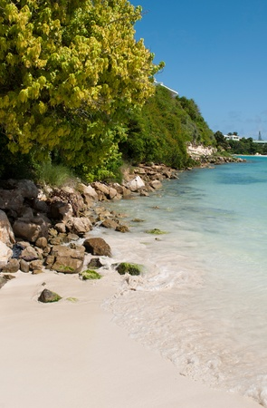 paradisiac beach with a gorgeous coast with nature and stones, Long Bay in Antigua Stock Photo - 10574629