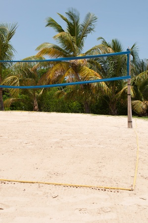 volleyball arena on a tropical beach surrounded by palm trees (blue sky) photo
