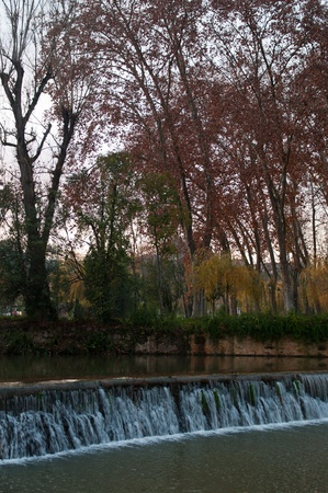 weir: gorgeous Nabao riverbank surrounded by trees in the city of Tomar, Portugal