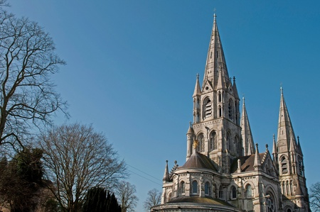 ireland: Saint Fin Barres cathedral in Cork, Ireland (blue sky background)