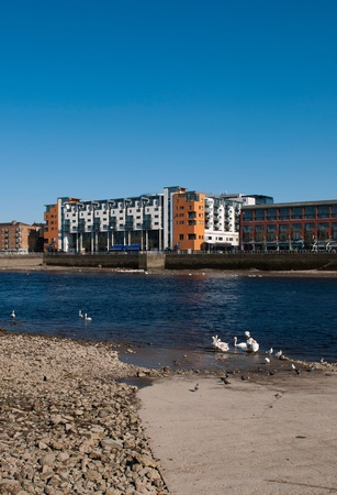 Limerick cityscape with modern architecture buildings over Shannon river with swans and pigeons, Ireland  gorgeous blue sky  photo