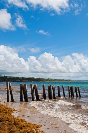 old wooden pier stilts on a deserted beach at Vieux Fort, Saint Lucia photo