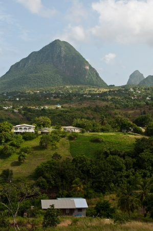 st lucia: view of the famous Pitons in Saint Lucia, Caribbean (over 700m high)