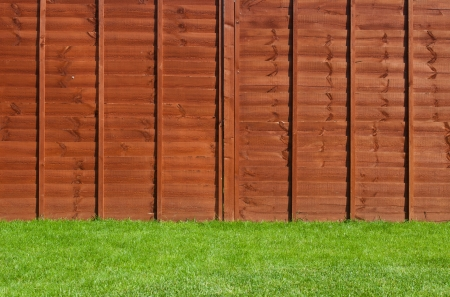 gorgeous backyard garden with green grass and wooden fence Stock Photo - 16493818