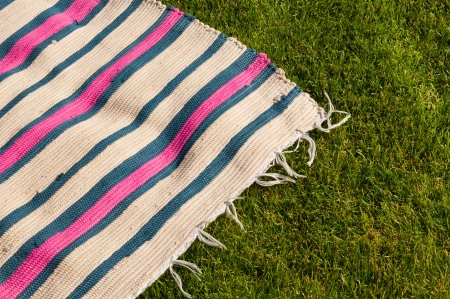 blue blanket: colorful picnic blanket on the grass field