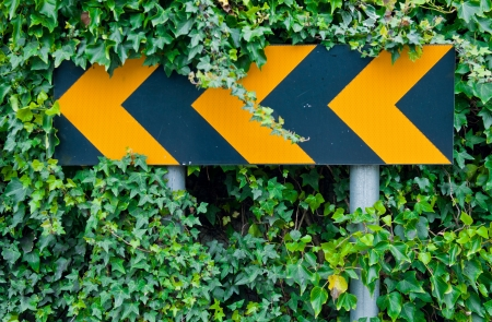 warns: yellow attention road sign warning drivers for dangerous curve ahead (over green leaves) Stock Photo