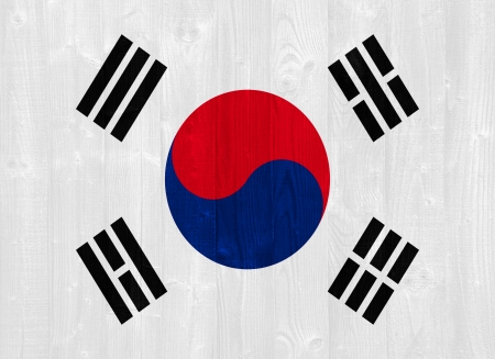 gorgeous South Korea flag painted on a wood plank texture photo