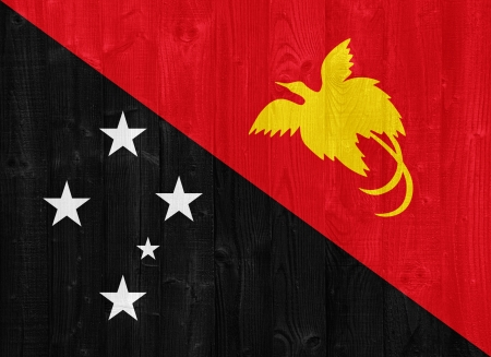 papua: gorgeous Papua New Guinea flag painted on a wood plank texture