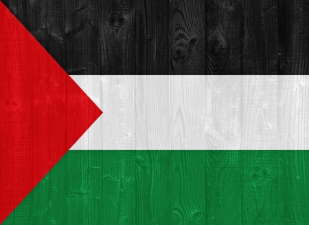 gorgeous Palestine flag painted on a wood plank texture photo