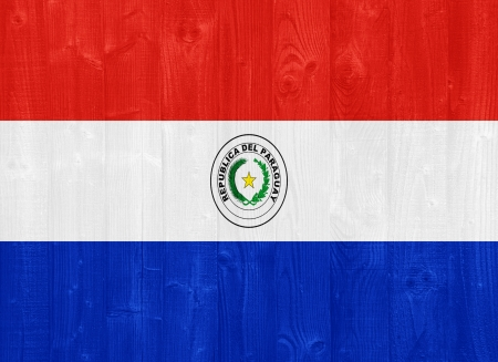gorgeous Paraguay flag painted on a wood plank texture photo