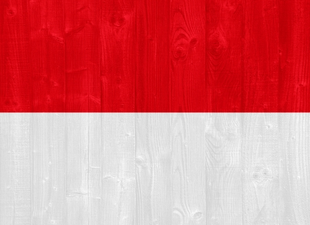 gorgeous Indonesia flag painted on a wood plank texture photo