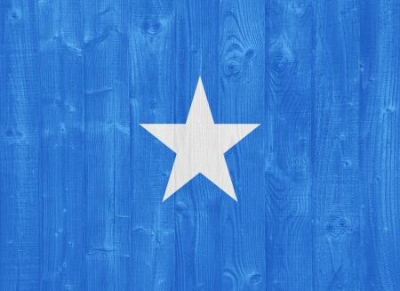 gorgeous Somalia flag painted on a wood plank texture photo