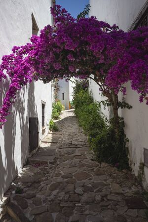 Street full of flowers of Castellar Castle, in Castellar de la Frontera. Villa fortress of the thirteenth century and one of the most beautiful villages in Spain