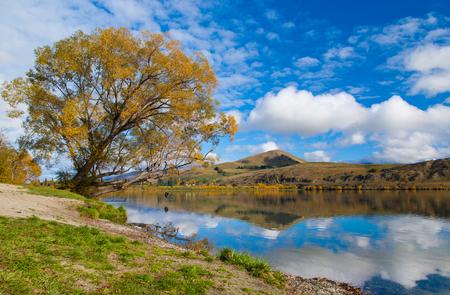 反射ヘイズ湖、南の島、ニュージーランドで晴れた日の紅葉します。 写真素材