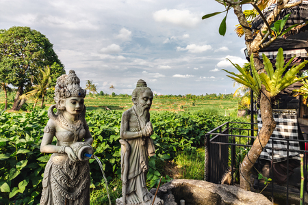 Hindu statue in a Rice terrace, Bali, Indonesia