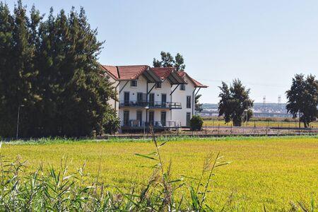 A rice field in Alcacer do Sal, Portugal Reklamní fotografie