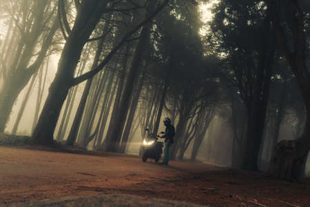 A motorcycle in the mystical fog of the Sintra forest, Portugal