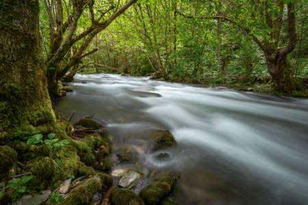 Impetuous current in a river among deciduous forests, in Samos, Courel, Galicia Stock Photo