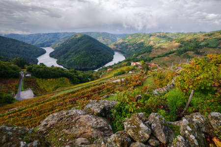 Meander of the River Minho surrounded by vineyards and wineries, in the Ribeira Sacra, Lugo, Galicia