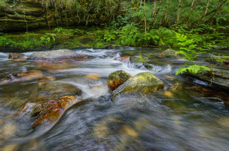 A stream flows between limestone rocks and fern covered banks in the Courel Mountains Geopark 版權商用圖片