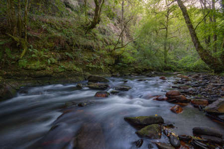 A river runs through wooded slopes in the mountains of Courel Galicia