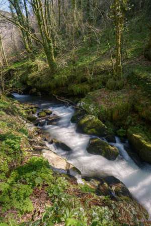 Rushing stream between mossy limestone rocks next to an oak forest in Courel Mountain Range in Galicia
