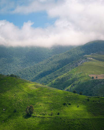 Summer morning with green meadows and clearings and clouds in the mountains of Ancares Cervantes Galicia Banco de Imagens