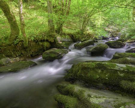 Water falls between limestone rock steps in a stream in Triacastela Galicia Banco de Imagens