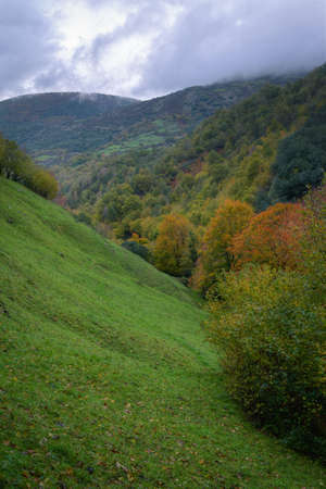 Autumnal atmosphere between green meadows and colorful forests in Devesa daRogueira in Courel Galicia