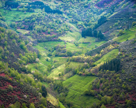 The zigzagging basin of a valley covered with grasslands and mixed forest in Ancares Cervantes Galicia