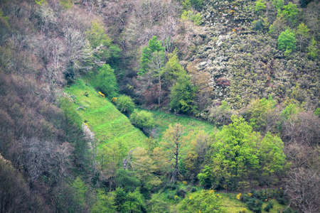 Green grass fields on the steep slopes of a valley in the Sierra de Ancares in Galicia Banco de Imagens