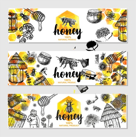 Vector hand drawn honey banners Illustration of healthy food.