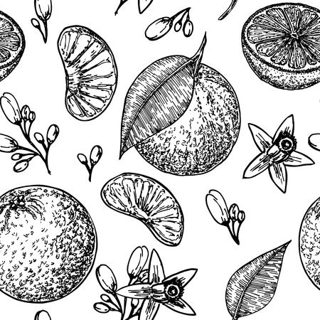 Vector pattern with oranges, flowers and leaves. Seamless texture design. Vintage botanical hand drawn illustration. Seamless pattern with hand drawn tangerine illustrations. Vettoriali
