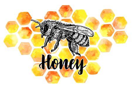 ee vector symbol with honeycombs. Organic honey    design