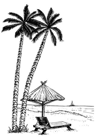 Landscape with a beach sketch of seaside promenade with palms