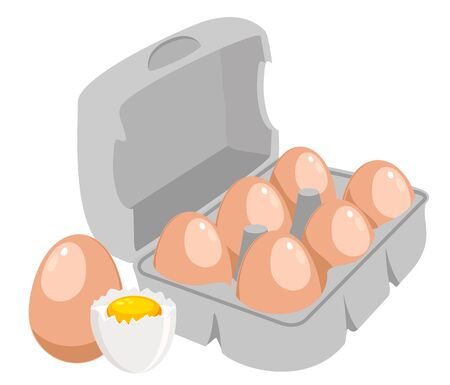 Chicken eggs. Brown eggs in paper box vector illustration.