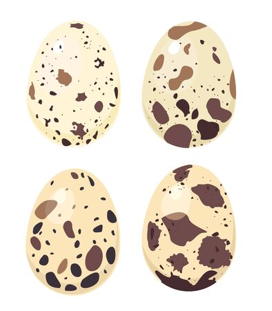 Quail eggs. Raw product, breakfast fresh. Isolated spotted eggs