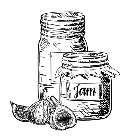 Fig jam vector drawing. Fruit Jelly and marmalade. Glass jars with fig jam.