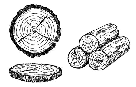 Wood logs, trunk sketch illustration. Hand drawn wooden materials. Firewood sketch set. Annual rings on a tree cut. Wood stumps