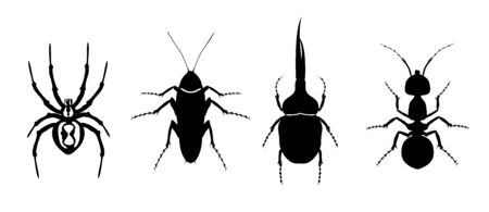Silhouette of insects. Spider, cockroach, beetle and ant. Beetles icons set Ilustrace