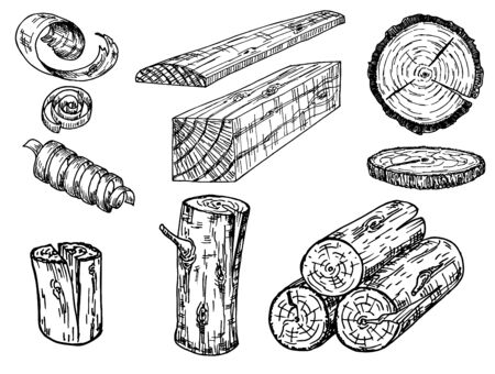 Set of wood logs for forestry and lumber industry. Illustration of trunks, stump, shavings and planks. Sketch Vectores