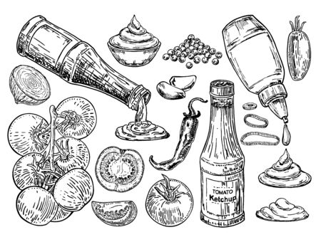 Ketchup sketch. The ingredients from which ketchup is prepared. Ketchup sauce bottle with tomatoes. Traditional tomato ketchup bottle isolated on white background. Fast Food ingredient sketch set