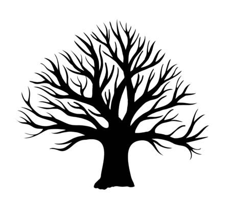 Tree without leaves silhouette. Oak tree silhouette. Oak without leaves. Winter tree
