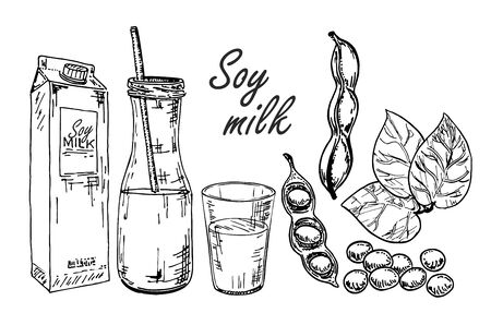 Soy milk vector illustration. Glasses with milk soy. Soybean plant, soybeans and soy milk packets Vecteurs
