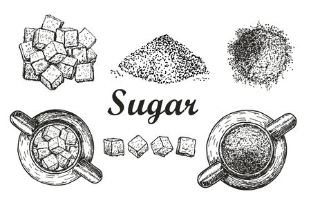 Set sweet refined crystal sugar and sugar in bulk white background. Ingredient for coffee, tea. Sugar in sugar bowl. Sketch style vector illustration. Hand drawn isolated design elements