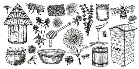 Beekeeping sketch icon set. Honey vintage set with bee beehive, glass jar and spoon, bees, melliferous flowers. Hand drawing apiary isolated objects. Vector illustration. Иллюстрация