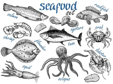 Hand drawn sketch set of seafood. Crab, lobster, shrimp, oyster, fish and squid. Engraved vintage template. Fish and sea food restaurant menu, flyer, business card promo. Vector retro illustrations